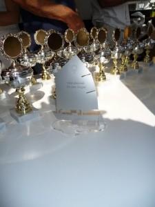 Jedes Jahr wetteifern über 100 Segelsportler um die Wanderpreise und den Karl-Lehmann-Pokal.